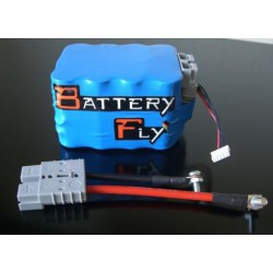 BATTERIA AL LITIO ULTRA LEGGERA BATTERYFLY per BMW R 800 F 09/12